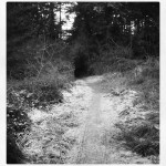 inkwell winter path frost tunnel pacificnorthwest walkalone intothenight