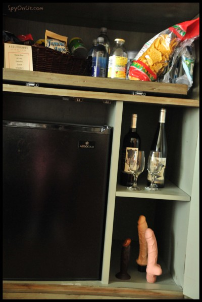 Dildos and Wine by the mini-fridge
