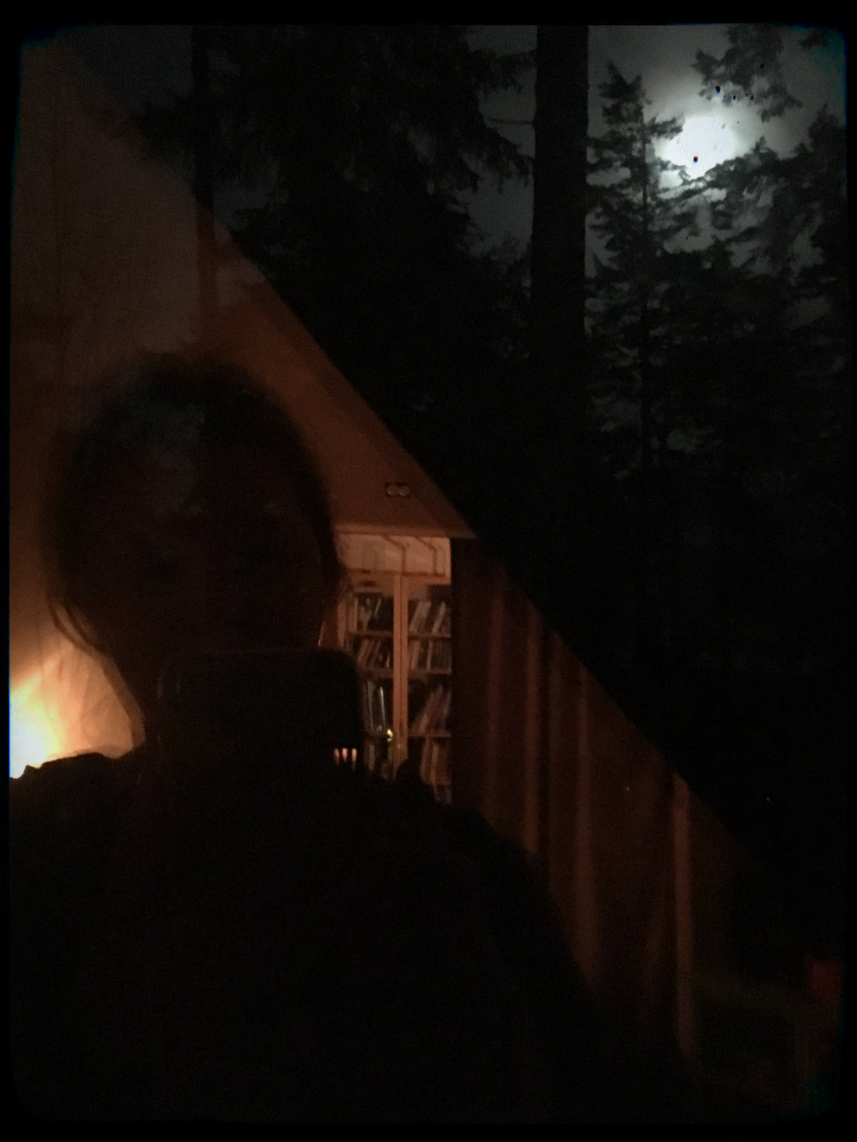 Trixie's reflected silhouette looking at the full moon