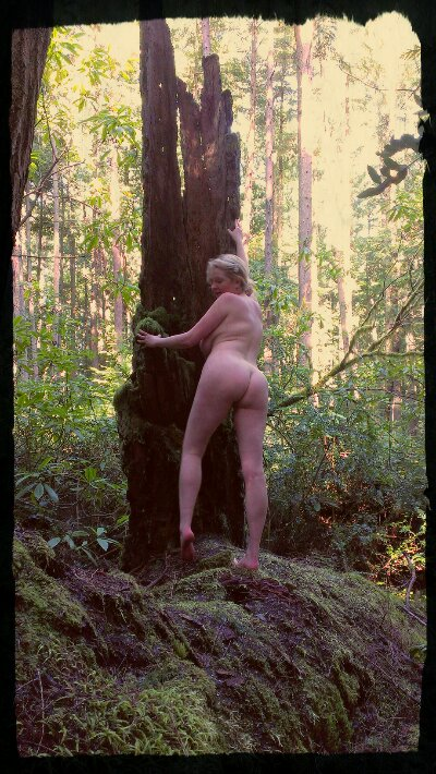 Trixie naked standing by a snag on a nurse log