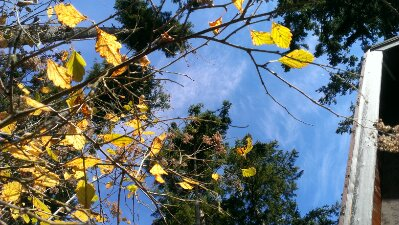 blue sky autumn equinox