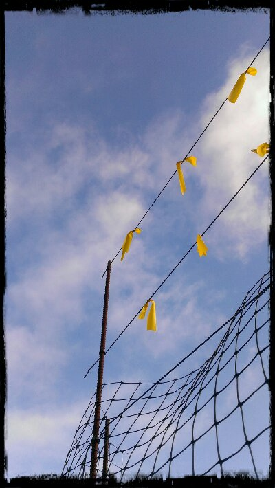 Blue sky & yellow ribbons